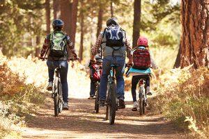 Rear view of a family of four riding away on bikes in a forest.