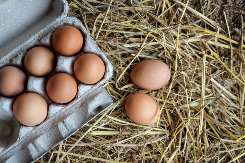 Brown eggs in a carton next to two eggs on hay.