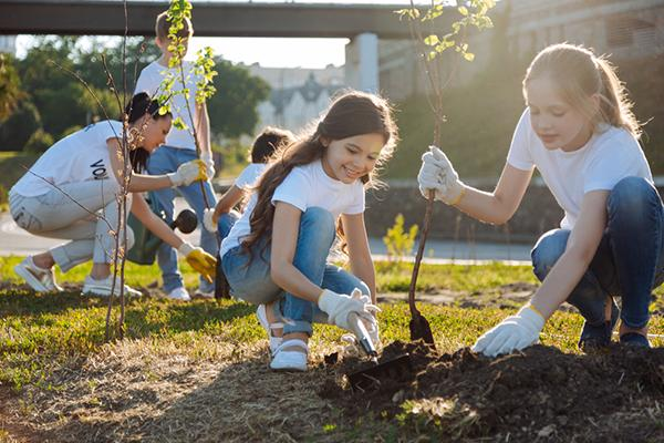 Young teens planting trees outside.